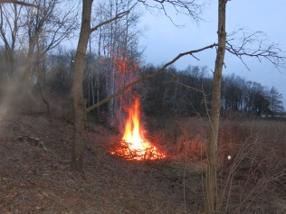 Nothing like a buckthorn fire on a chilly night!