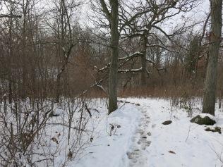 Walking the trail along the escarpment
