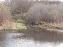 Bluff Creek East