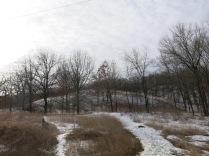Little Kestol Prairie