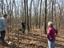on the Scuppernong Segment