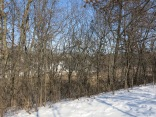 Thick buckthorn is obscuring the beautiful landscape