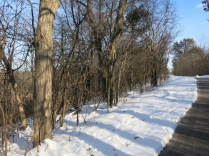 I guess, if you're The Buckthorn Man, that is all you are going to see.