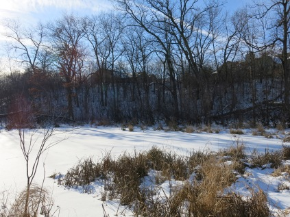 #13 frozen pond