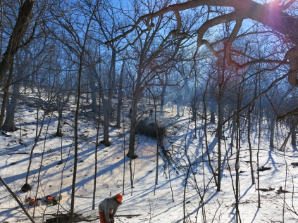 DNR Conservation Biologist, Sam Smyrk, cut buckthorn up on that steep slope