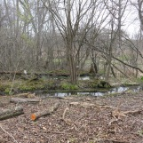 Here is that drainage ditch I mentioned above