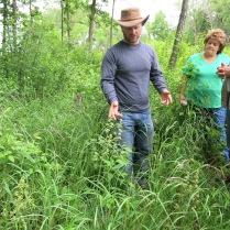 Dan showing off swamp saxifrage