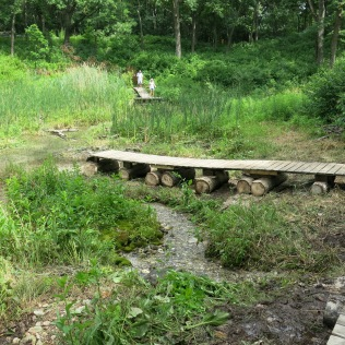 The end of the deck makes a fine viewing platform for the surrounding springs.